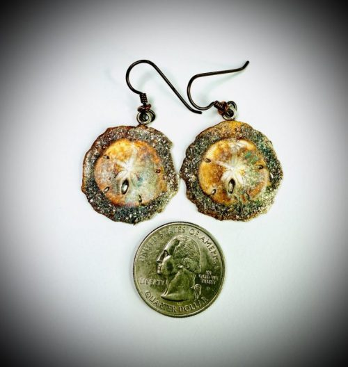 Sea Foam Sand Dollars earrings top view