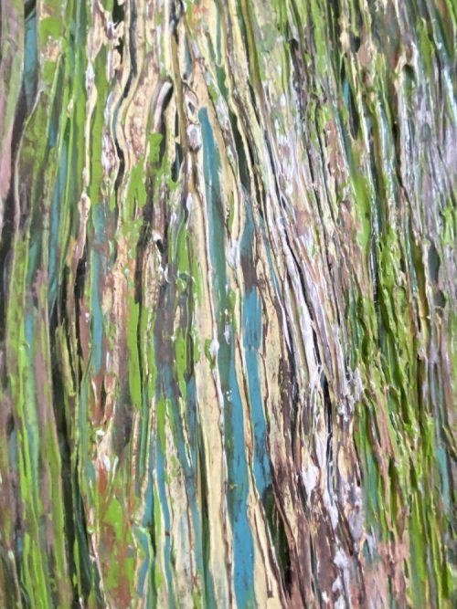 Close up view of Wood Grain Oak Tree