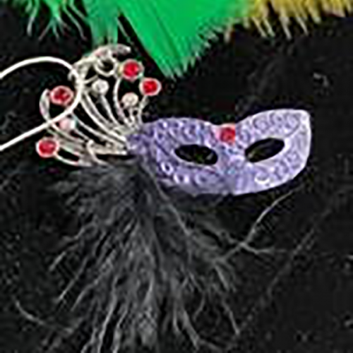 Mardi Gras mask with grey feathers